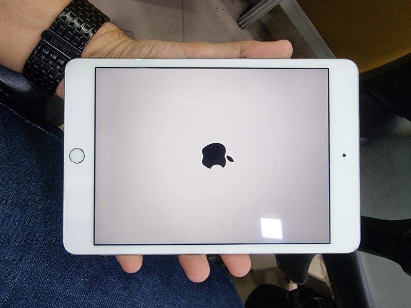 Apple  یپد مینی 4